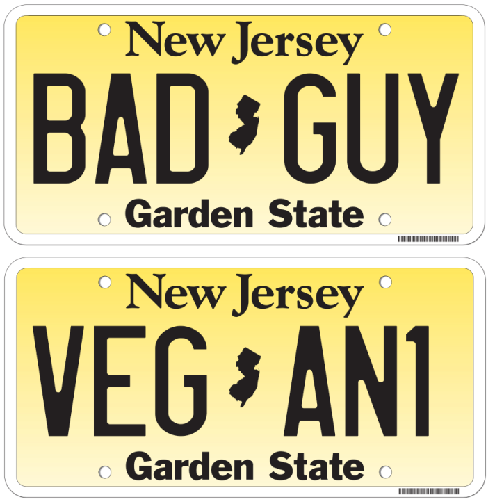 will-reading-liscence-plates.png